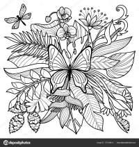Dibujos Para Colorear Selva Tropical Pagina Para Colorear De