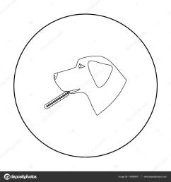 dog with thermometer icon in outline design isolated on white background veterinary clinic symbol stock vector illustration vector by pandavector [ 1600 x 1700 Pixel ]