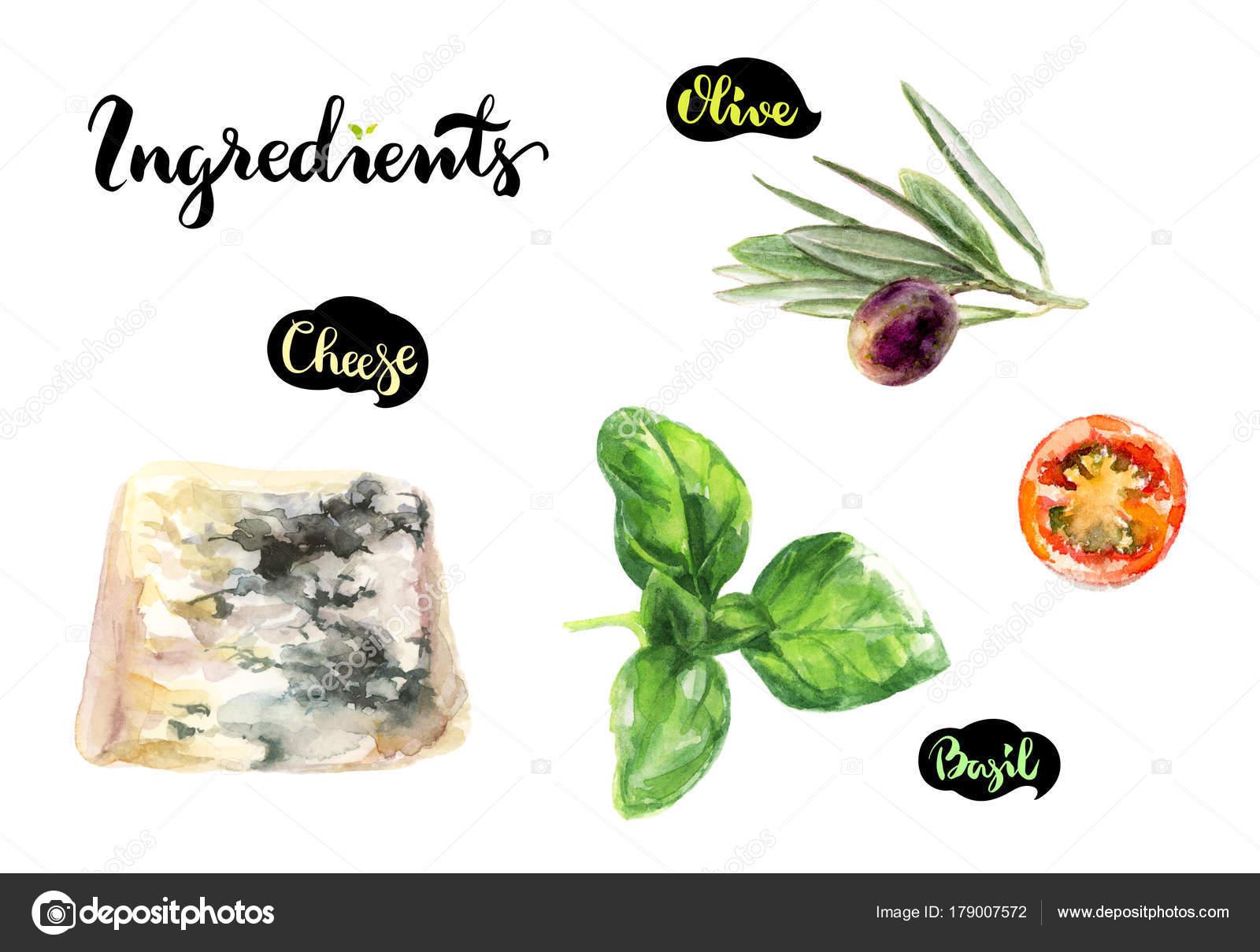 kitchen herb kit brass hardware 奶酪蓝色樱桃番茄水彩手绘插图在白色背景下隔离厨房配料套装 图库照片