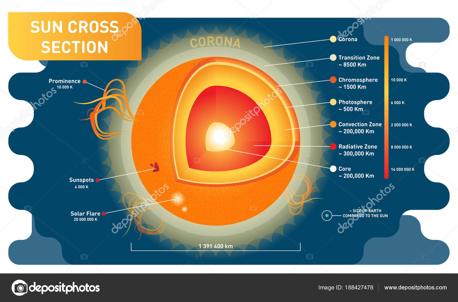hight resolution of sun cross section scientific vector illustration diagram with sun inner layers sunspots solar flare and prominence educational information poster