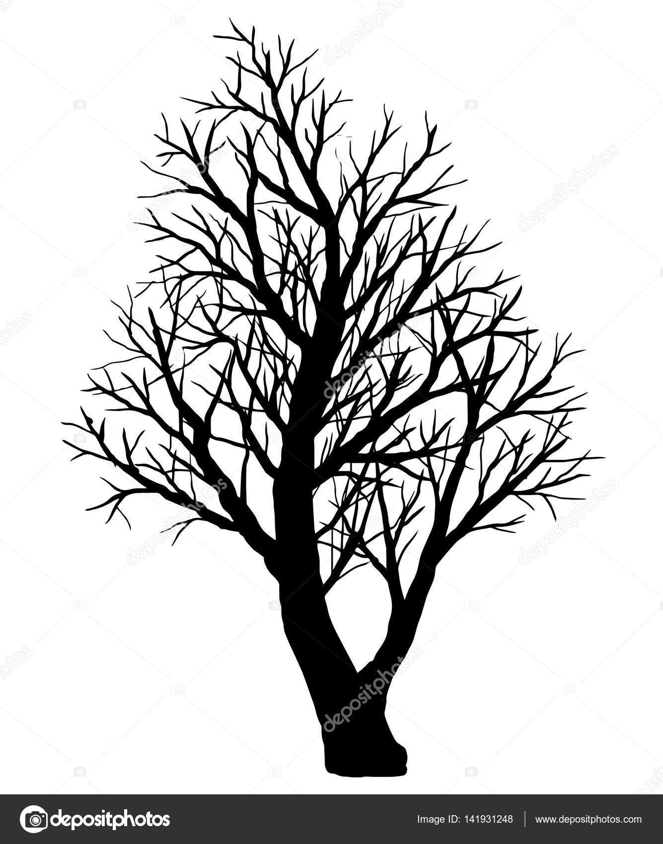 34 Kahler Baum Zeichnung - Besten Bilder von ausmalbilder