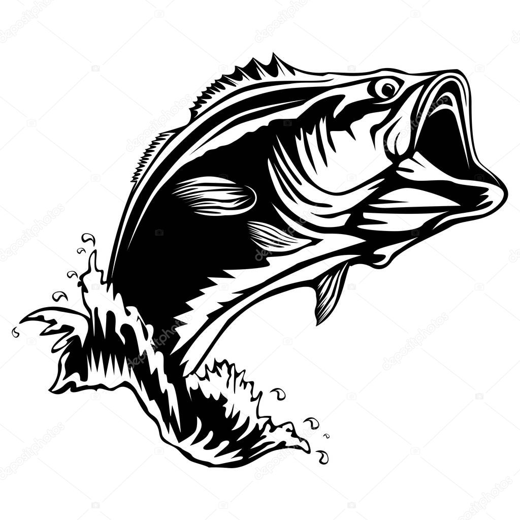 Fotos Black Bass
