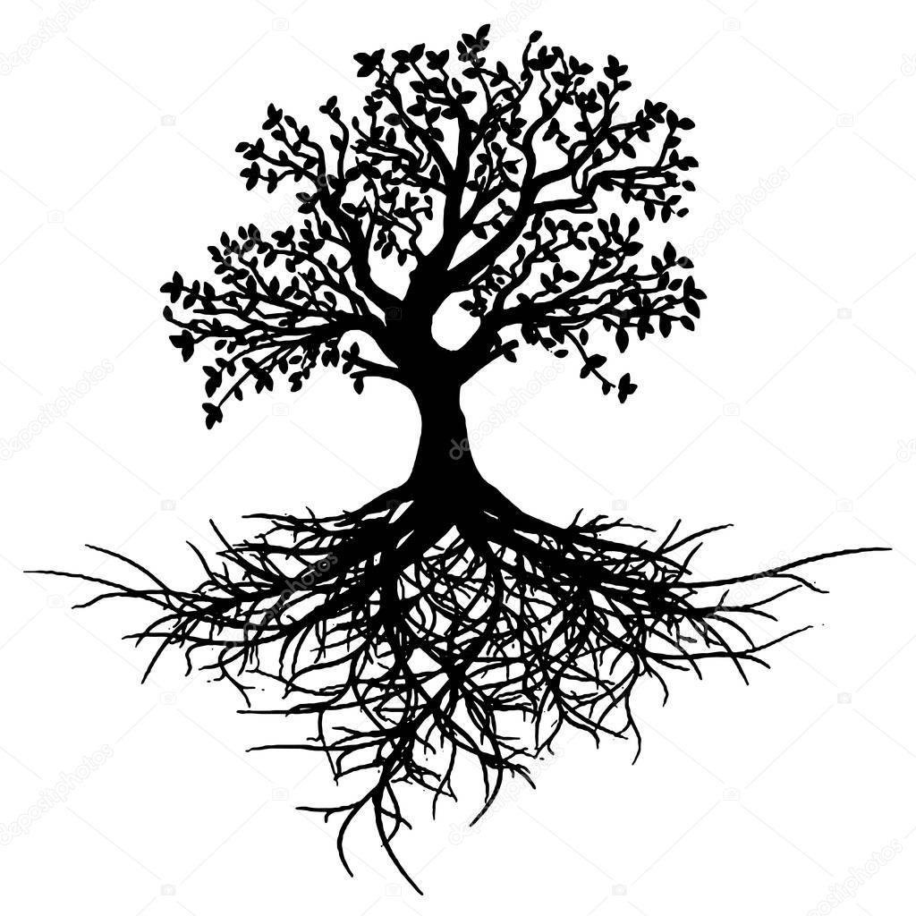 Cie Nia Drzewo Ycia Tatua