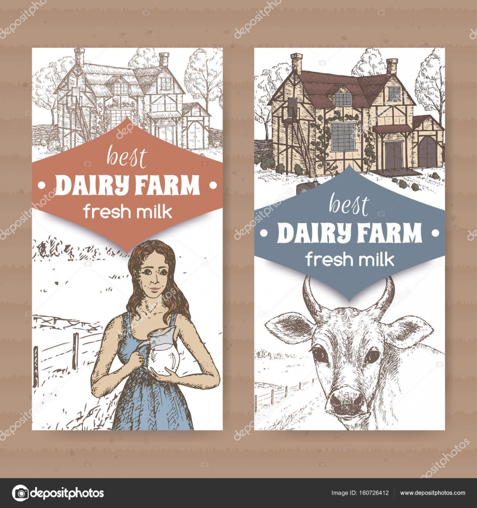hight resolution of two dairy color farm shop labels with farmhouse milkmaid and cow on white