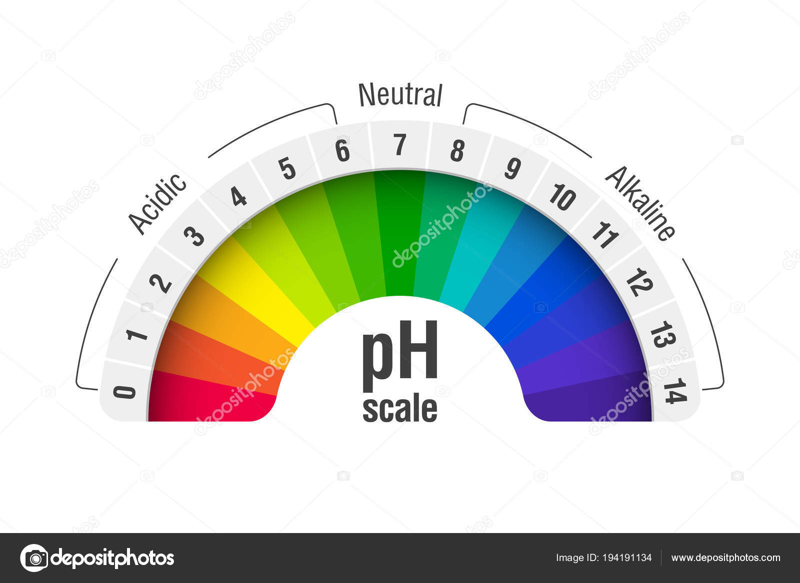 hight resolution of ph value scale chart for acid and alkaline solutions acid base balance infographic vector by alhovik