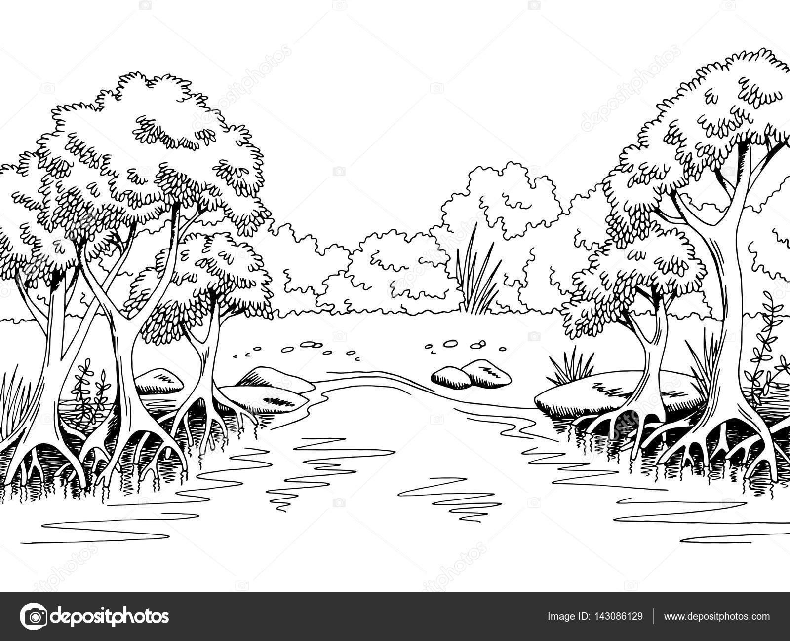 Jungle Rivier Grafisch Zwart Witte Boslandschap Sketch