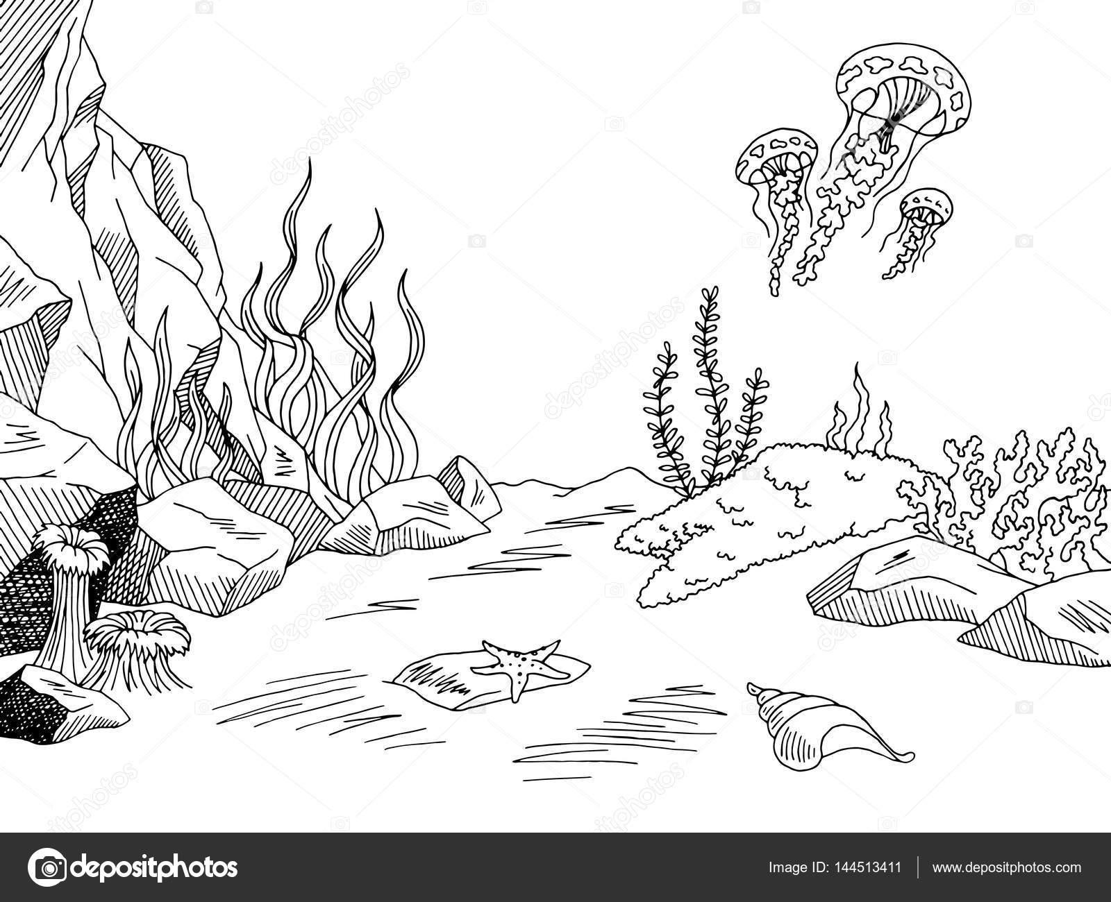 Underwater Graphic Sea Black White Sketch Illustration