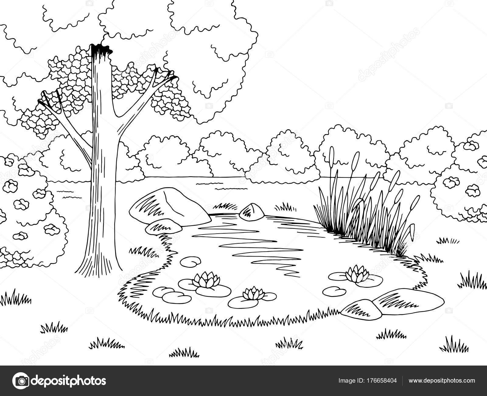 Pond Graphic Black White Lake Landscape Sketch
