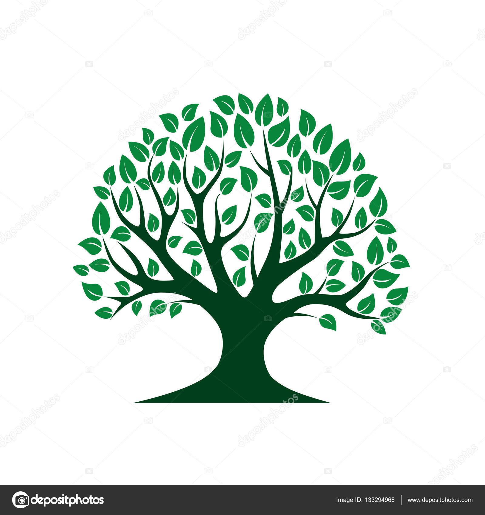 Albero Verde Di Vettore Illustrazione Di Vettore Parco E