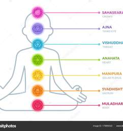 chakras infographic chart in simple and modern flat style male body silhouette in lotus pose yoga and ayurveda concept vector illustration  [ 1024 x 832 Pixel ]