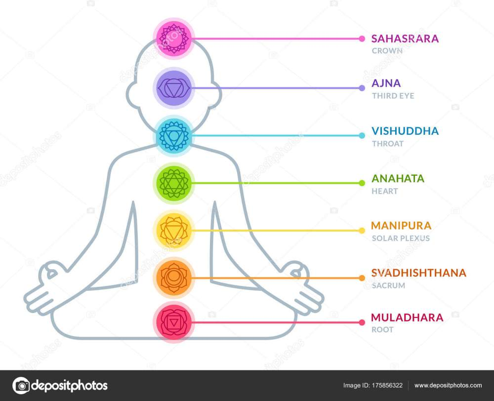 medium resolution of chakras infographic chart in simple and modern flat style male body silhouette in lotus pose yoga and ayurveda concept vector illustration