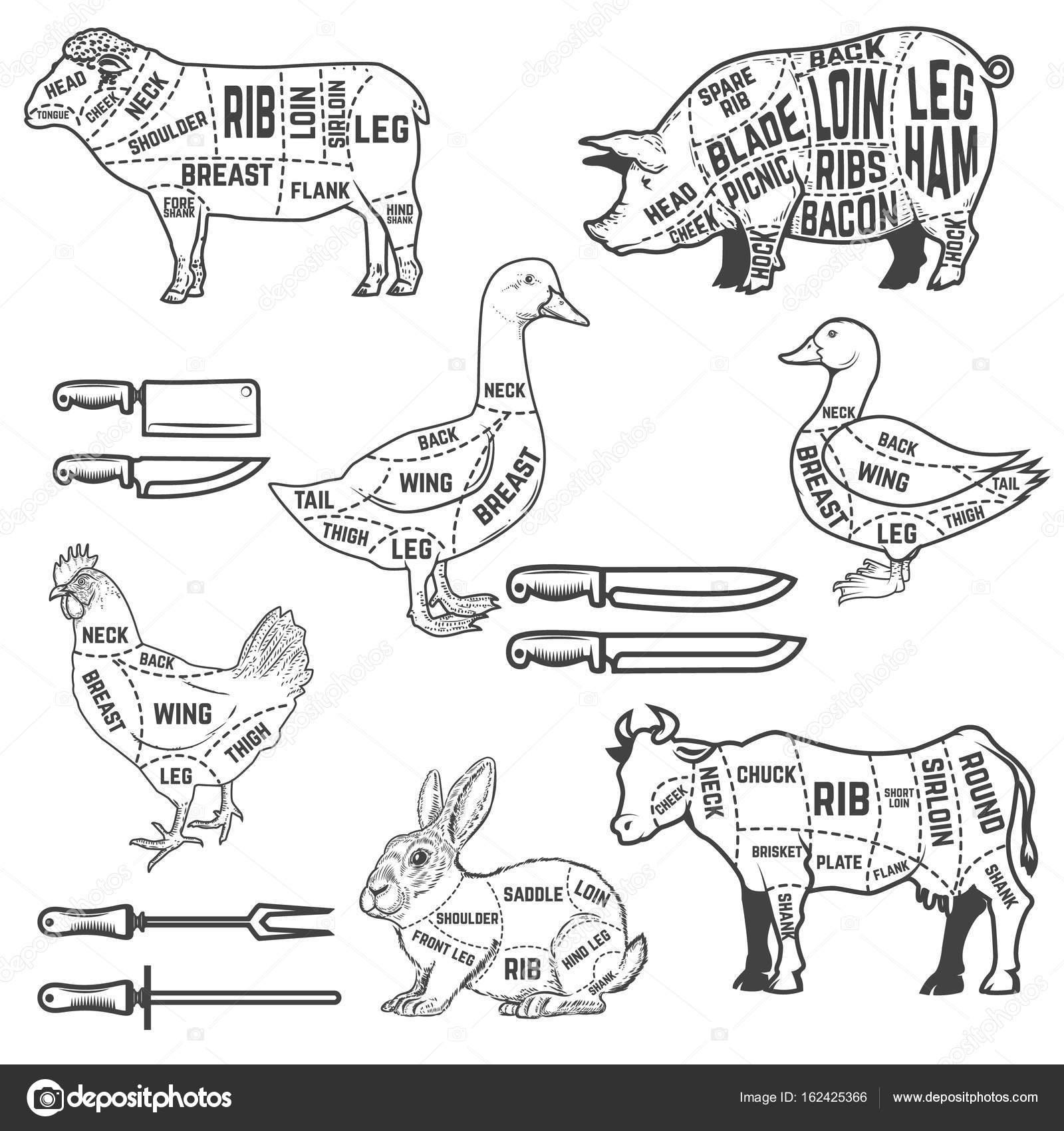 Obrázek průvodce pro bourání masa pro Husa, vepřové