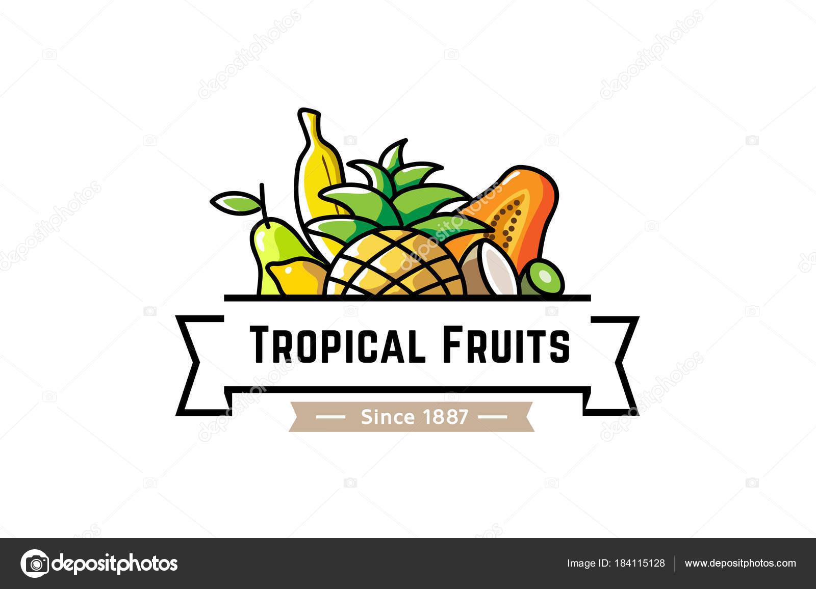 tropical fruits logo design