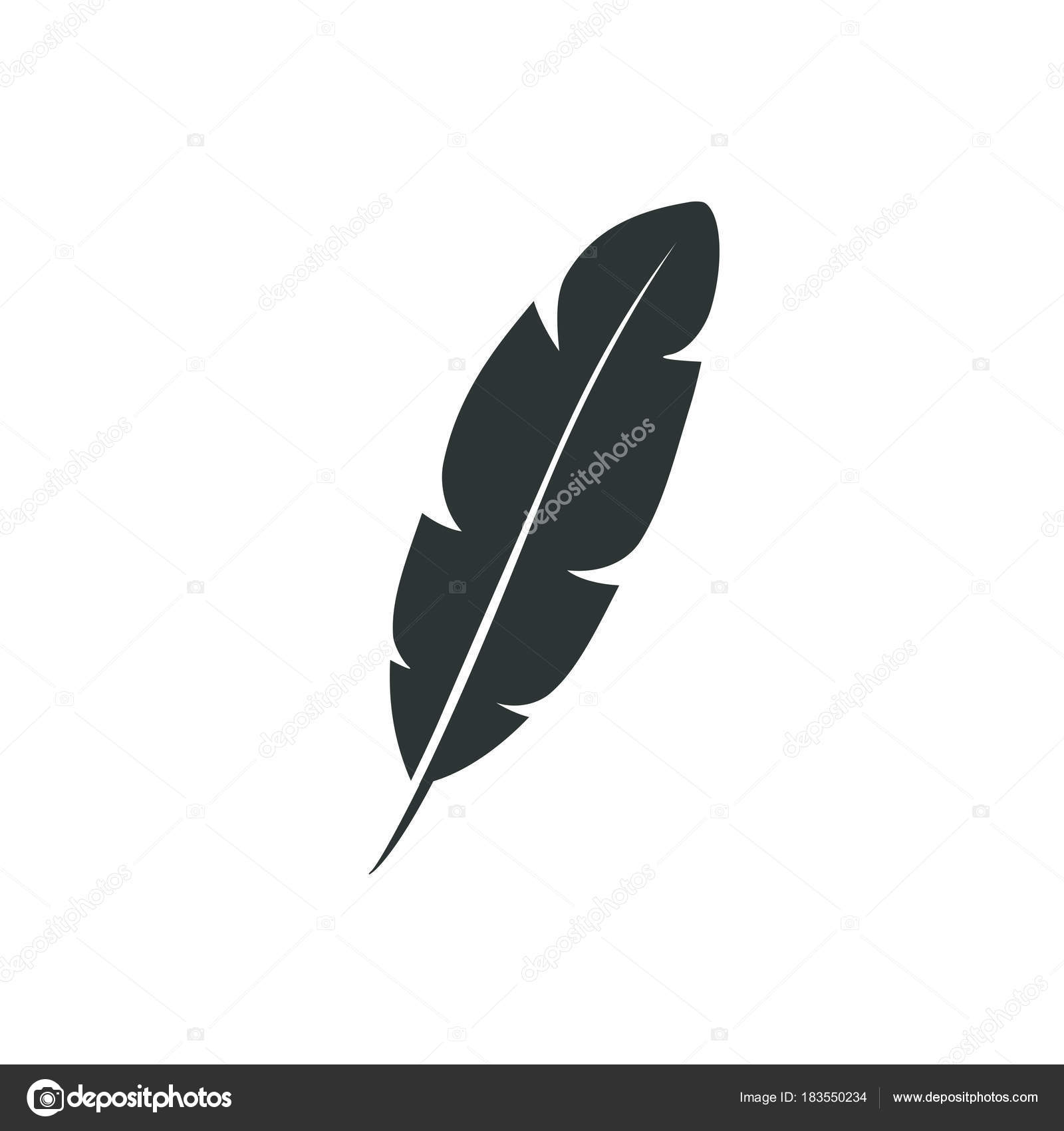 feather vector icon isolated