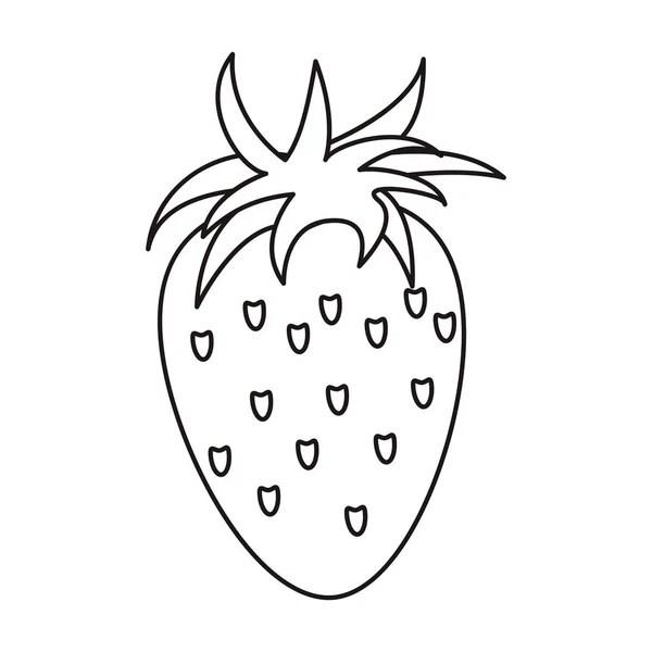 contorno de saudável de morango nutrição — Vetor de Stock
