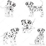 Dalmatians Cute Puppy Sad Vector Illustration Portrait Of Dalmatian Puppy Dog Isolated Premium Vector In Adobe Illustrator Ai Ai Format Encapsulated Postscript Eps Eps Format