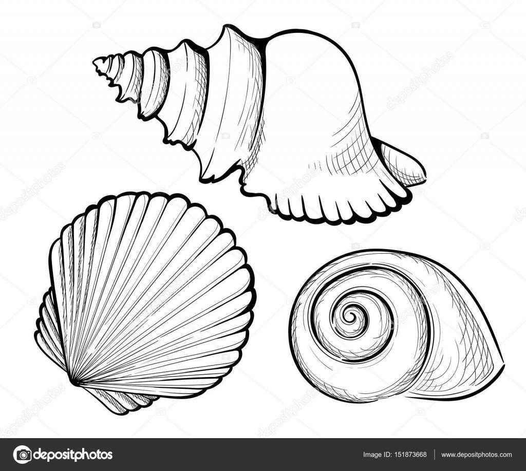 Hand zu zeichnen Set Muschel, Koralle, Krabben, Garnelen