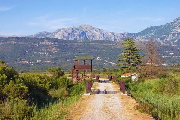 Rolinnych i zwierzcych rezerwy Solila Tivat Czarnogra  Zdjcie stockowe  OlgaIlinich