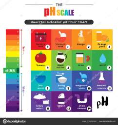 the ph scale universal indicator ph color chart diagram stock vector [ 963 x 1024 Pixel ]