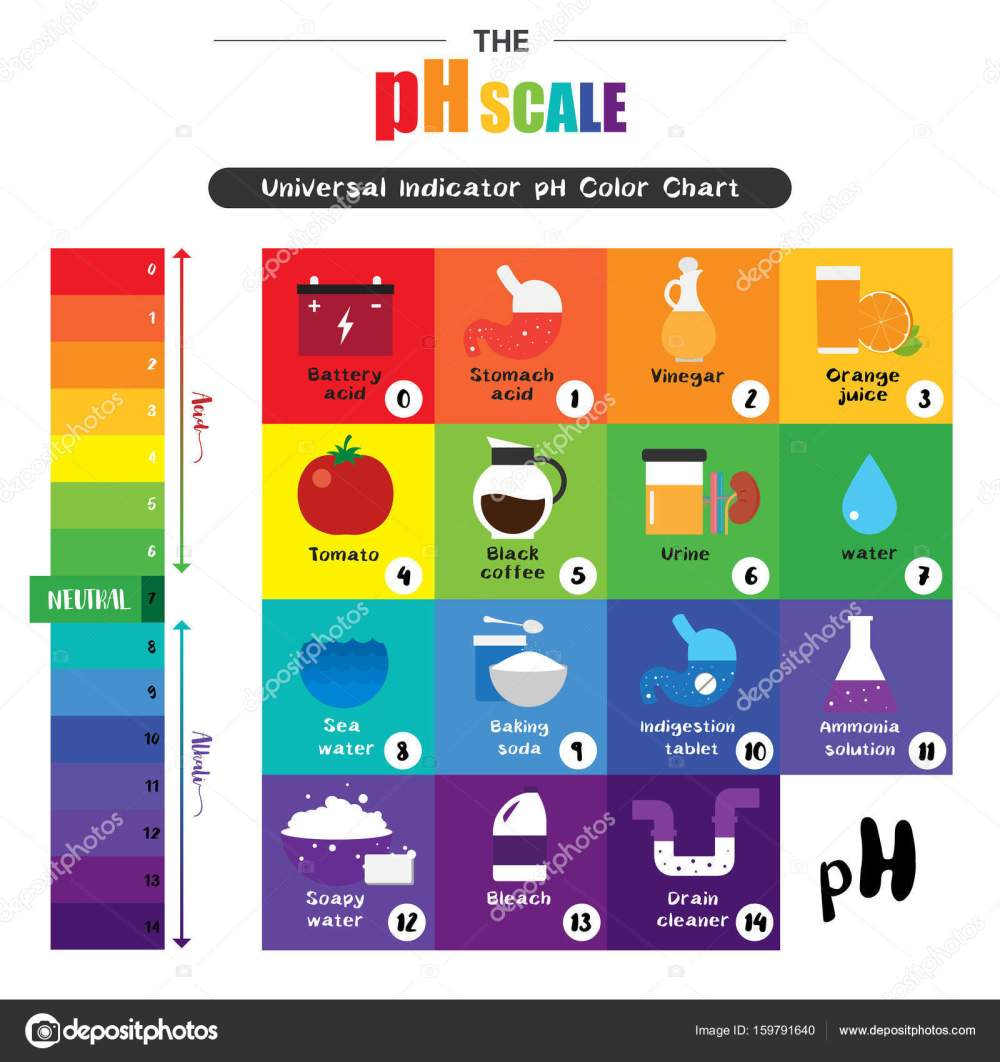 medium resolution of the ph scale universal indicator ph color chart diagram stock vector