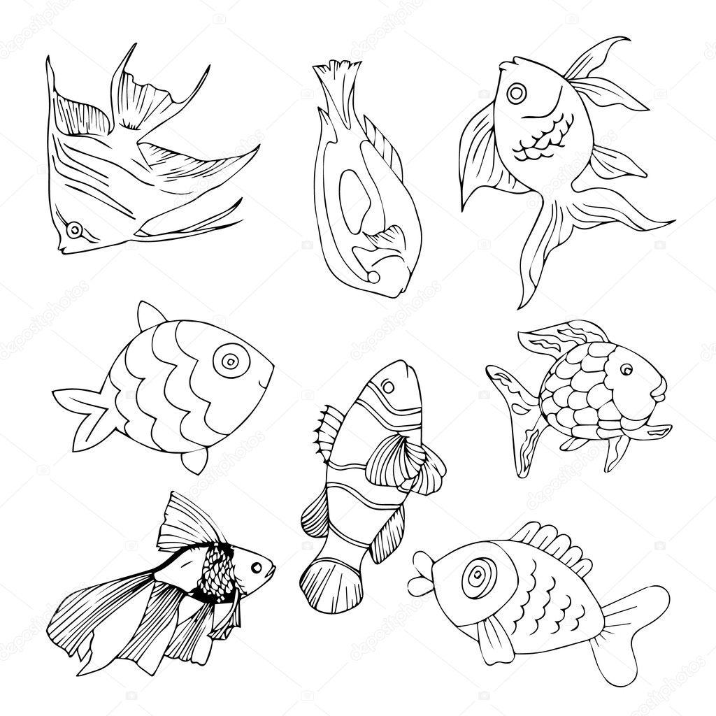 Fish logo. Fish icon. Fish poster. Fish banner. Fish set
