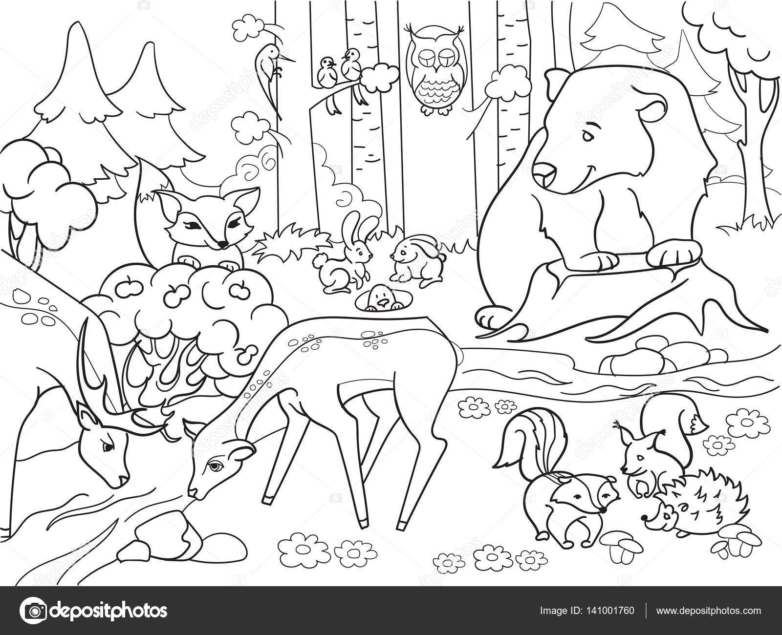 Paysage De Foret Avec Des Animaux Coloriage Vecteur Pour