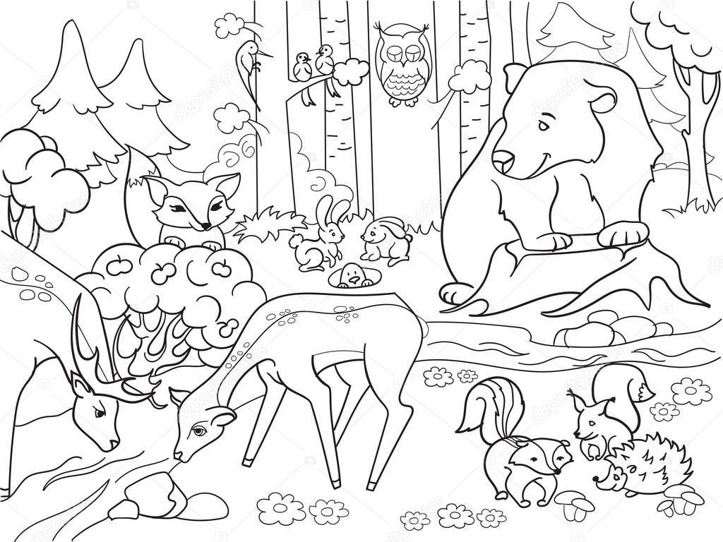 Krajobraz Las Z Zwierz Ta Kolorowanki Wektor Dla Doros Ych