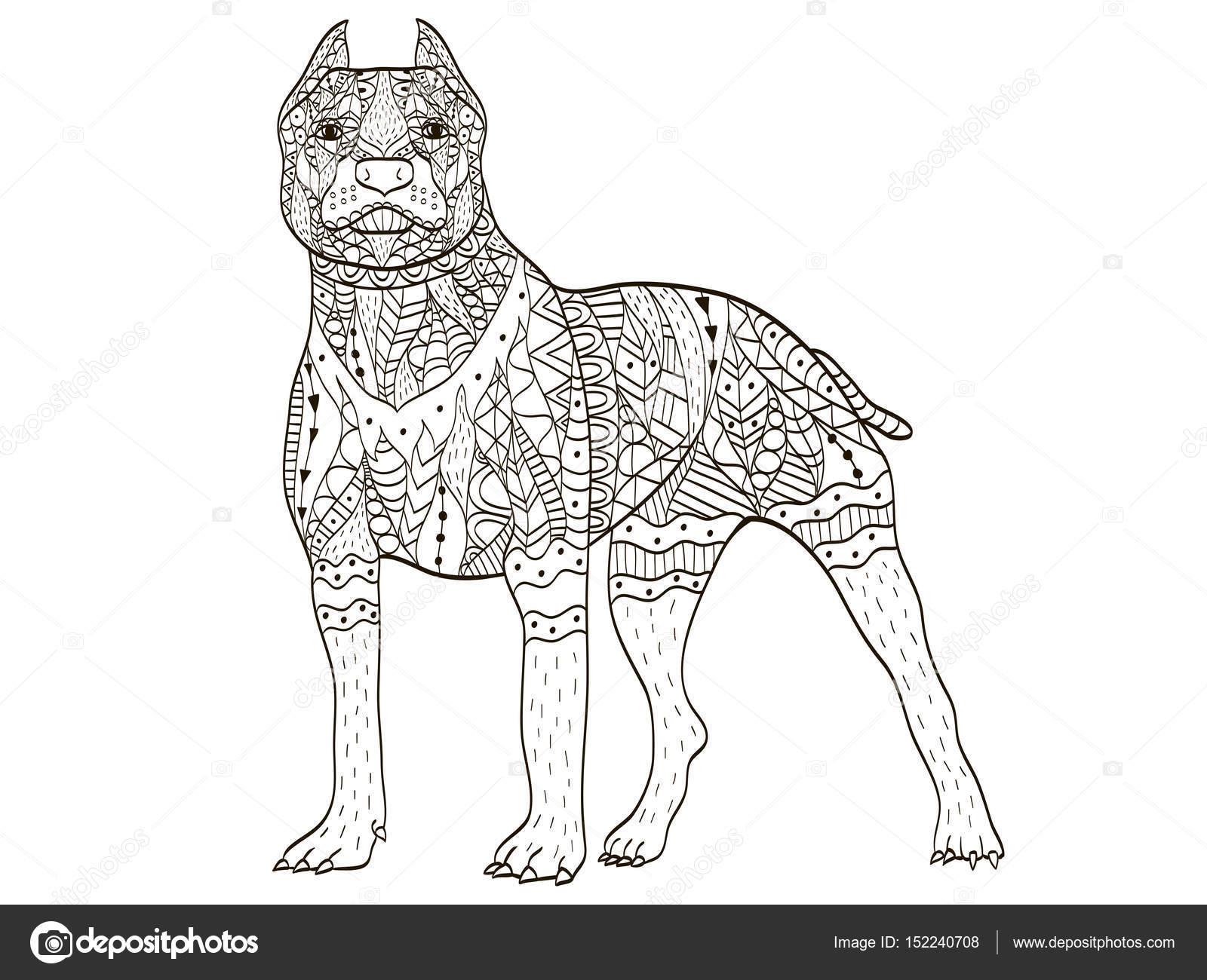 10 Coloriages Mandalas Bull Terrier