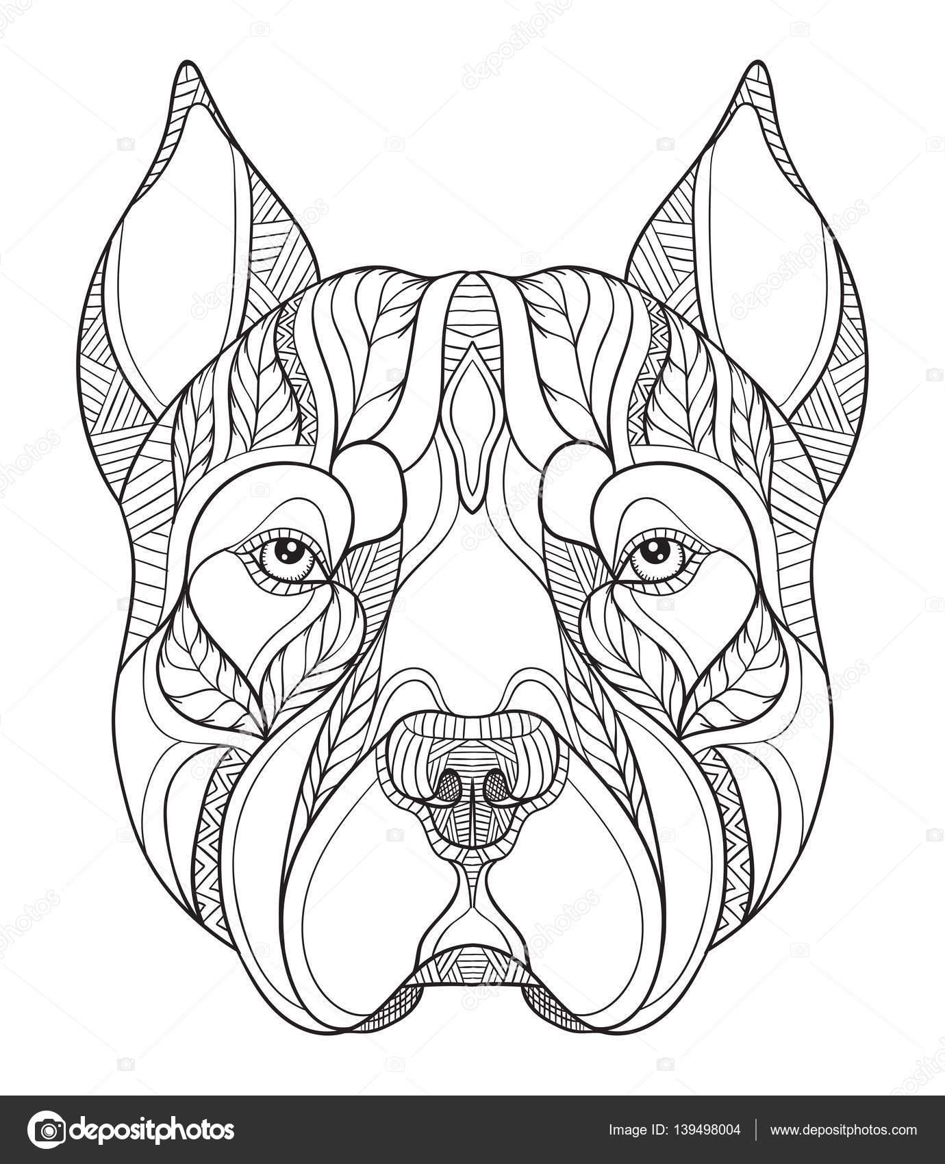 Pit bull terrier zentangle cabeça estilizada, vetorial