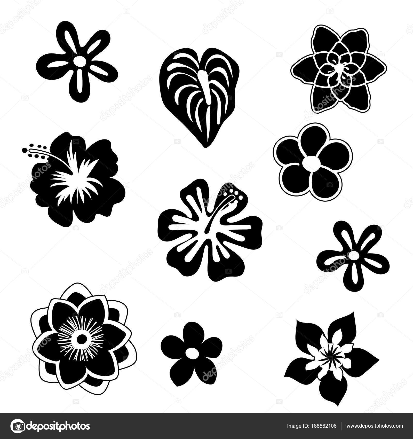 Tropical Flowers Silhouette Elements Set Isolated On White
