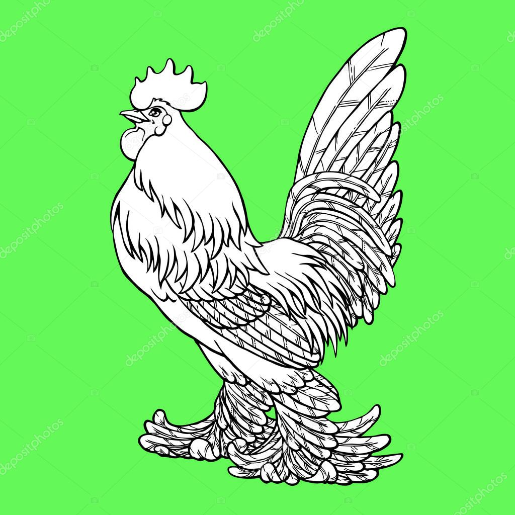 Proud Rooster Coloring On Green Background Decorative Chicken Monochrome Coloring Page Book A Symbol Of The Chinese New Year 2017 According To East Calendar Premium Vector In Adobe Illustrator Ai