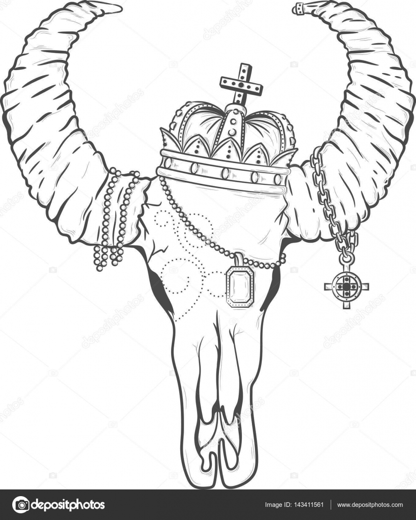 hight resolution of skull buffalo bull boho illustration vector american design tribal native cattle head drawing dead art decoration background symbol