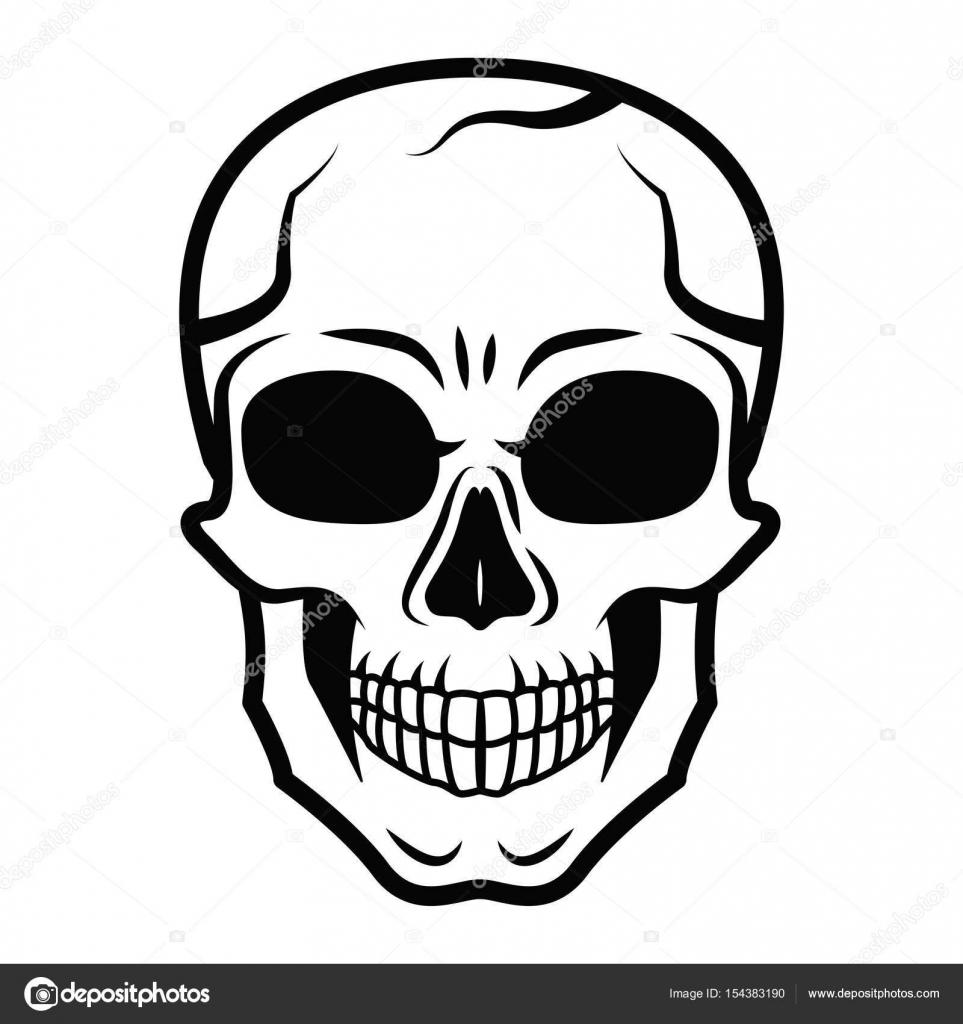 Line art black skull isolated on white background. Outline