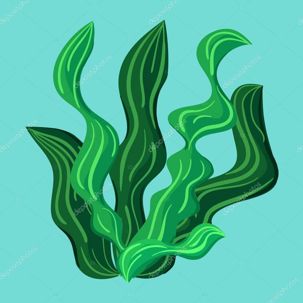 Imgenes Algas Animadas Algas De Vector En Estilo De