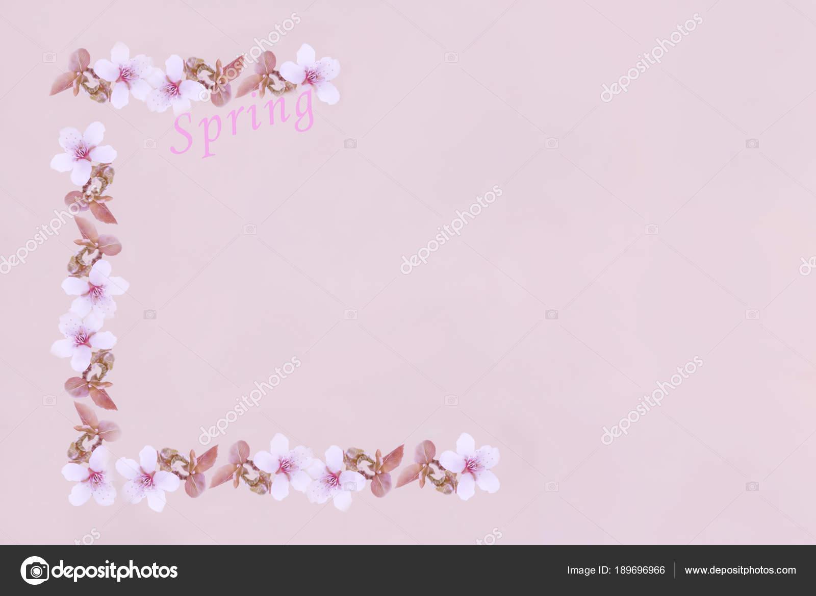corner frame cherry blossoms