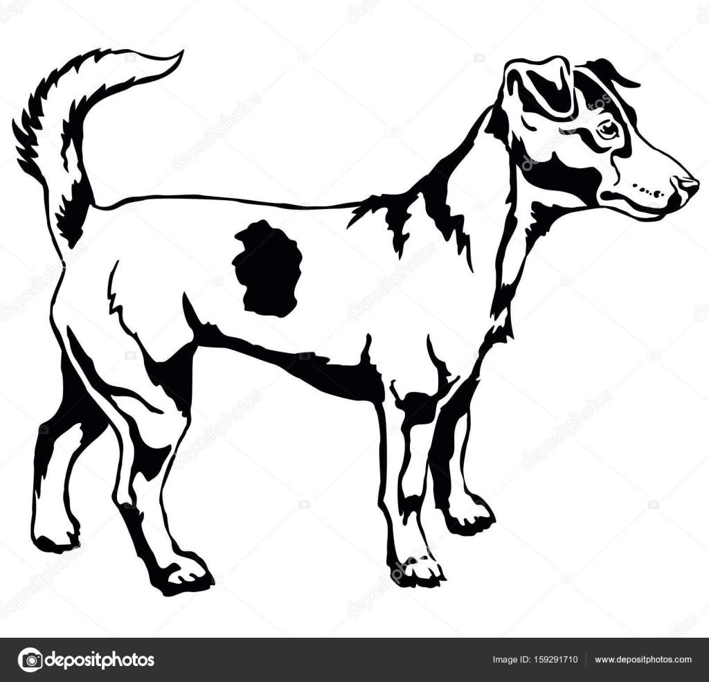 Retrato De Pe Decorativo De Dog Jack Russell Terrier