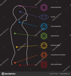 chakra system of human body chart seven chakra symbols location information of each chakra chakra centers vector by  [ 963 x 1024 Pixel ]