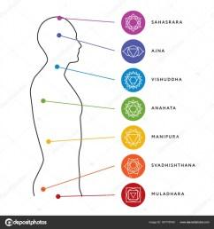 chakra system of human body chart seven chakra symbols location information of each chakra chakra centers vector by moibalkon [ 963 x 1024 Pixel ]