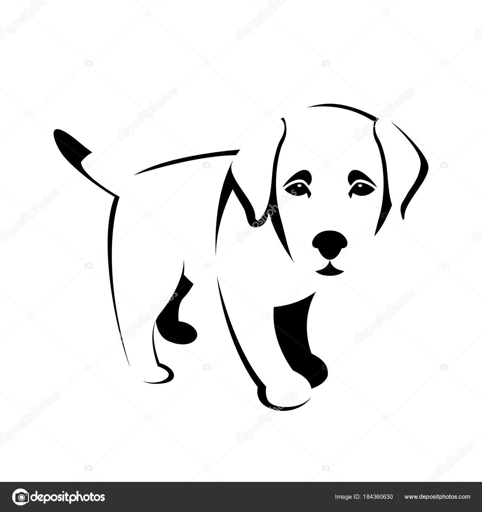 A Still Dog