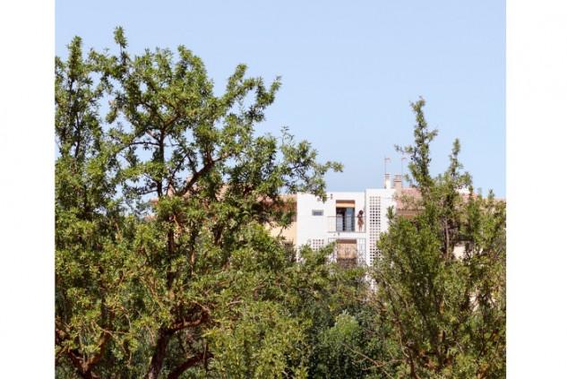 La casa, escondida entre los árboles