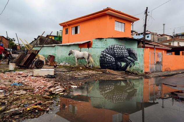 Armadillo en Sao Paulo (Brasil) / © ROA