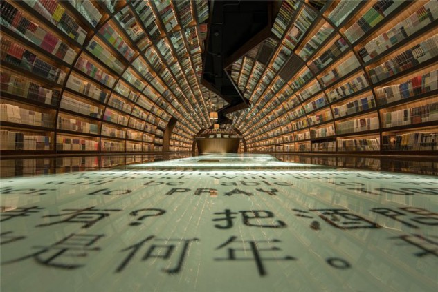 Os milhares de livros