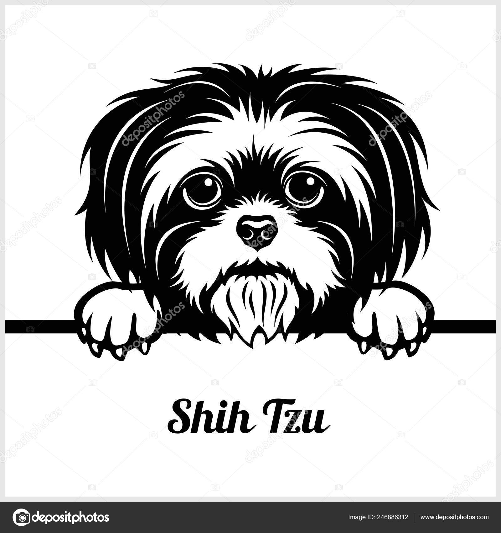 The Best And Most Comprehensive Shih Tzu Clipart Black And