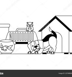 dog hamster and cat on cage food house pet vector illustration vector illustration vector by  [ 1600 x 1060 Pixel ]