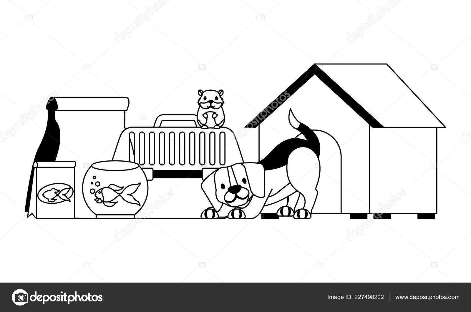 hight resolution of dog hamster and cat on cage food house pet vector illustration vector illustration vector by
