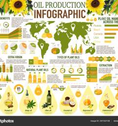sunflower olive and rapeseed corn peanut coconut and hemp oil diagram with health benefits statistic vector by seamartini [ 1600 x 1251 Pixel ]