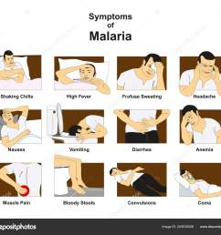 symptoms malaria infographic diagram conceptual drawing including shaking chills fever stock vector [ 1600 x 1429 Pixel ]