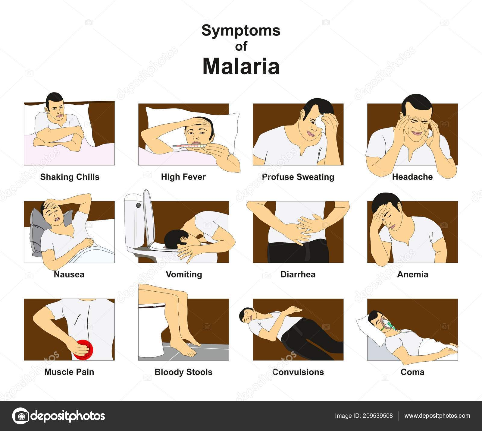 hight resolution of symptoms malaria infographic diagram conceptual drawing including shaking chills fever stock vector