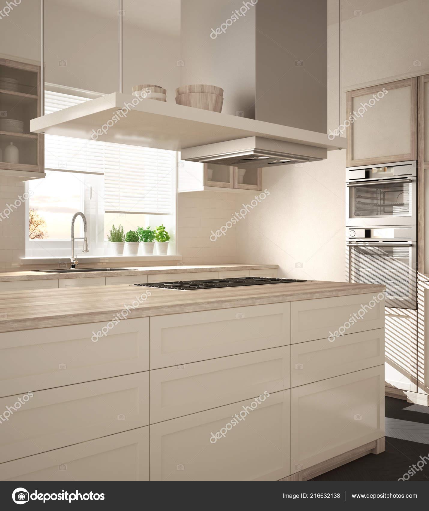 blanco kitchen sink commercial door 现代木和白色厨房与海岛气体火炉和水槽镶木地板建筑简约室内设计 图库 现代木和白色厨房与海岛气体火炉和水槽镶木地板建筑简约