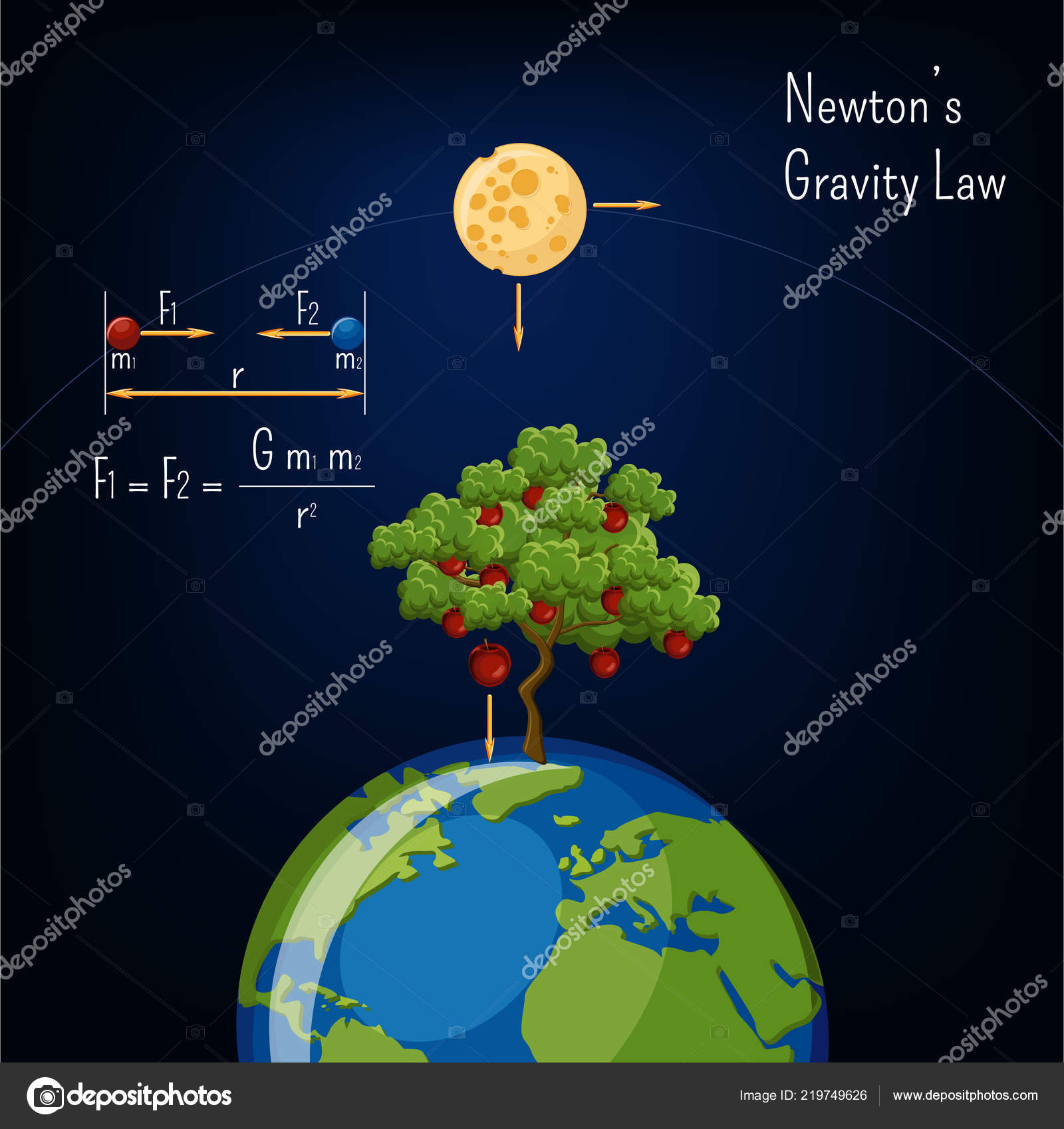 Newton Gravity Law Infographic Earth Globe Moon Apple Tree